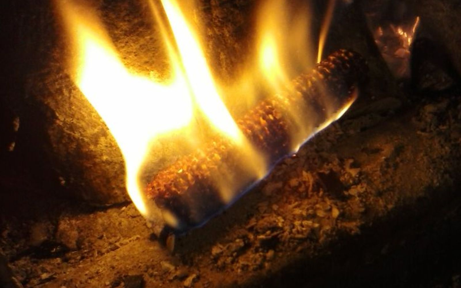 s 9 free fire starters for your summer bbqs, fireplaces mantels, outdoor living, repurposing upcycling, Soak corncobs in olive oil lamp oil