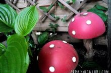 don t grow mushrooms diy them , crafts, gardening