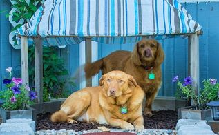 papasan dog hut, outdoor living, pets, pets animals, woodworking projects