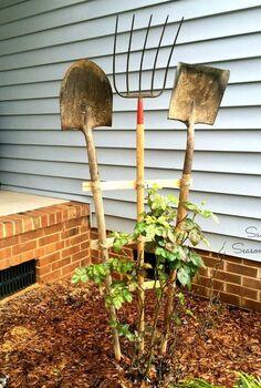 diy trellis using old garden tools, diy, gardening, outdoor living, repurposing upcycling, tools