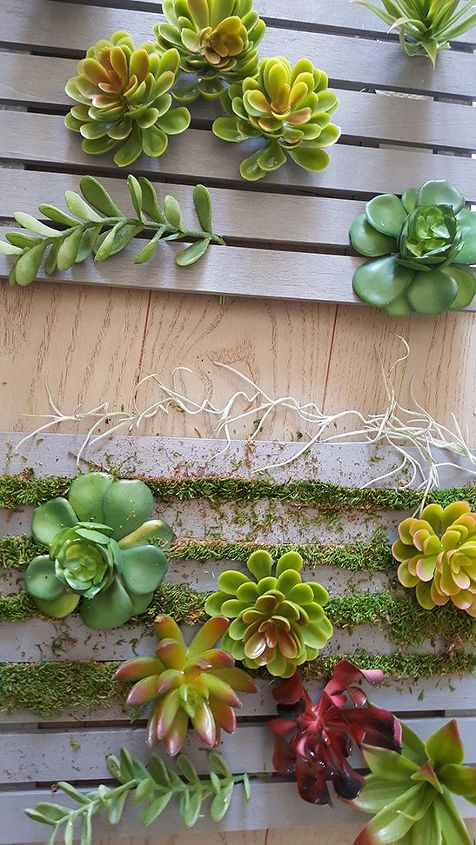 Diy Vertical Succulent Garden Hometalk