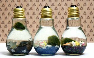 marimo moss ball diy light bulb aquarium, crafts, how to, repurposing upcycling