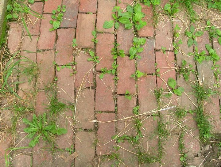 how to clean a patio without chemicals