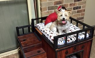 luxury pet beds, pets, pets animals, Luxury pet bed