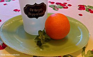 diy orange peppermint pest spray, cleaning tips, go green, how to, pest control