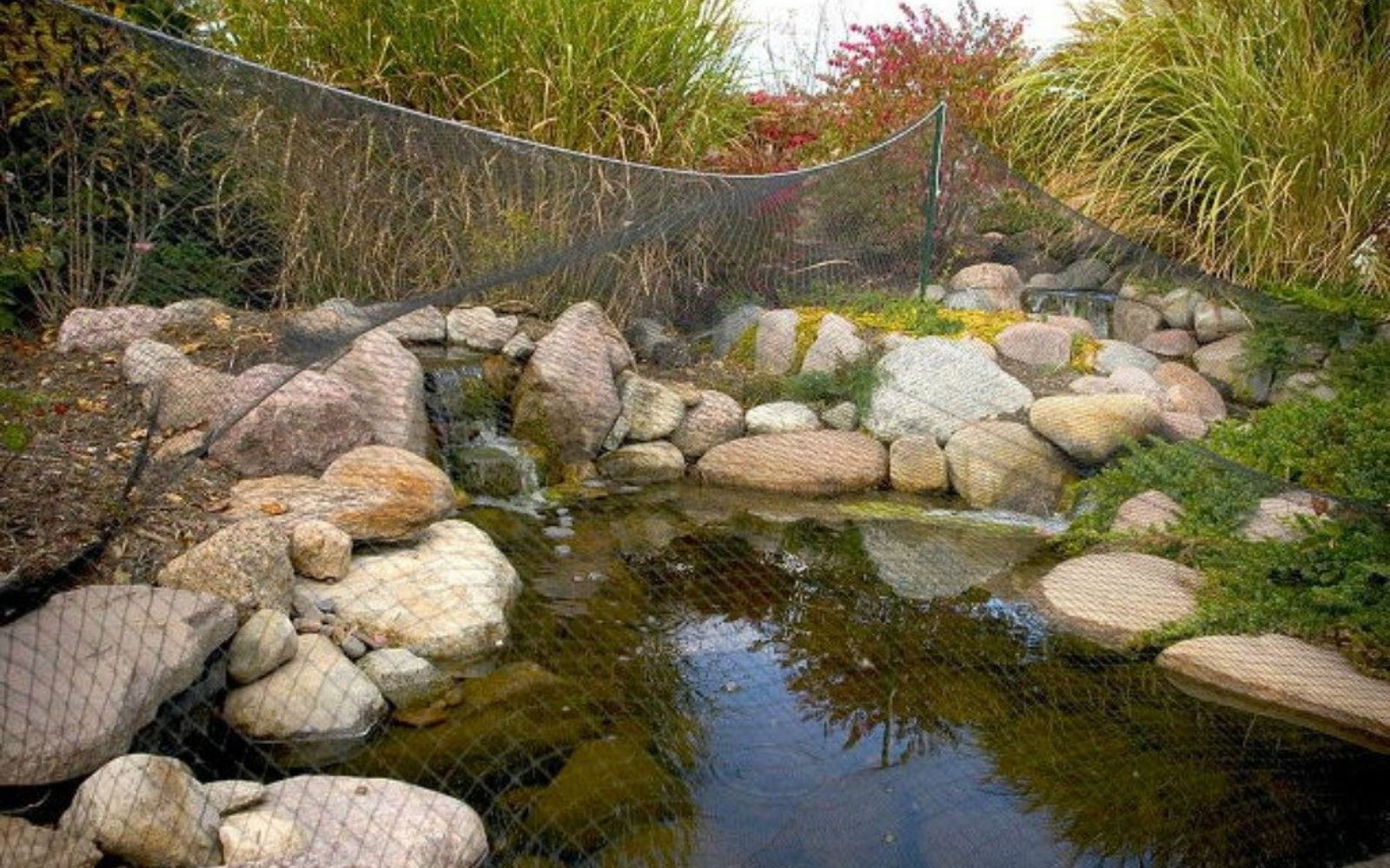 s see how 11 clever gardeners get their yards ready for fall, gardening, They cover their ponds with a net