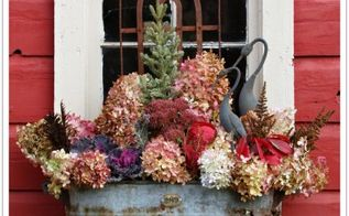 a fall into winter window box , container gardening, flowers, gardening, how to, hydrangea