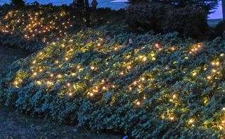 how to make your garden glow, gardening, how to, landscape, lighting, perennial