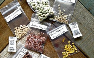heirloom hybrid seed differences plus growing tips, gardening, homesteading