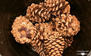 bleached and sandy pine cones, crafts, gardening, woodworking projects