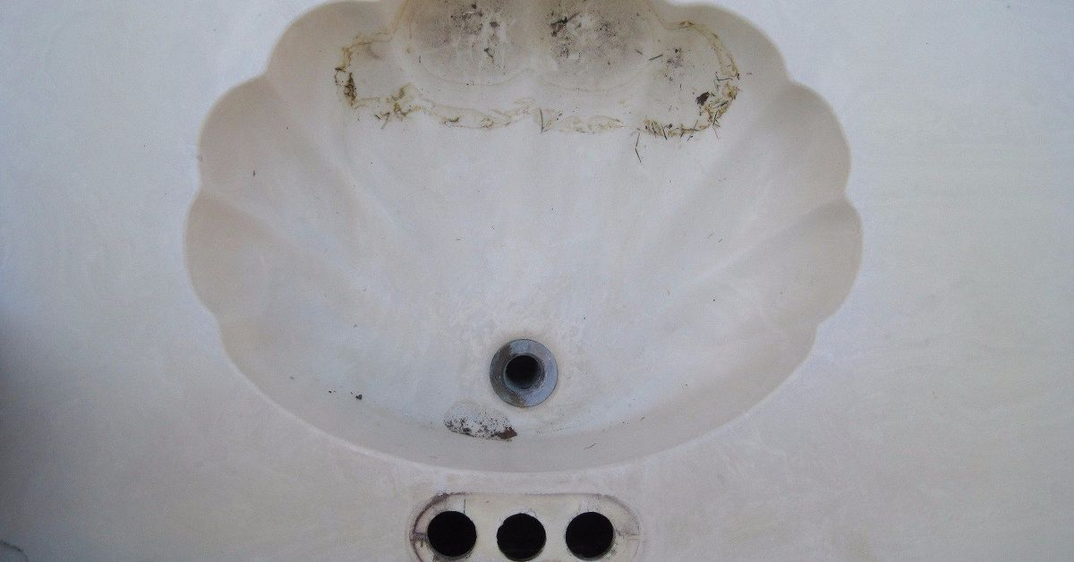 Any Ideas For A Sea Shell Shaped Bathroom Sink Vanity