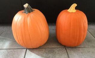 Make A Fake Pumpkin Look Realistic Hometalk