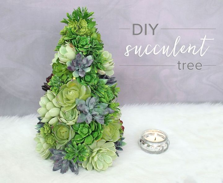 Diy Succulent Tree Hometalk