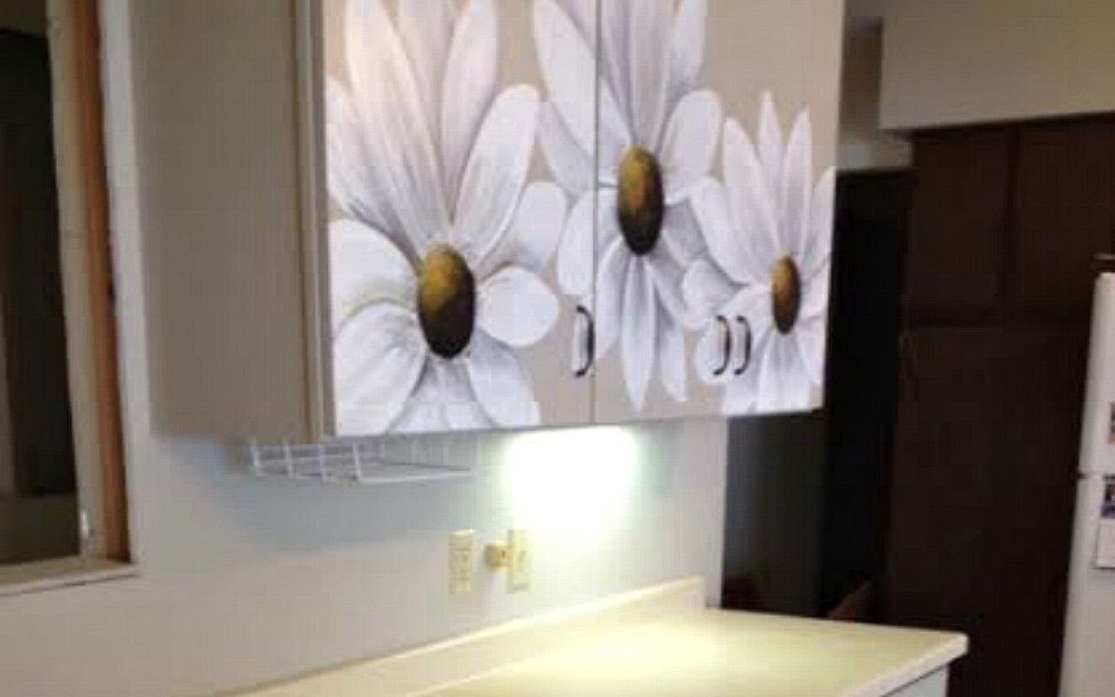 s transform your kitchen cabinets without paint 11 ideas , kitchen cabinets, kitchen design, Add some art to your cabinets