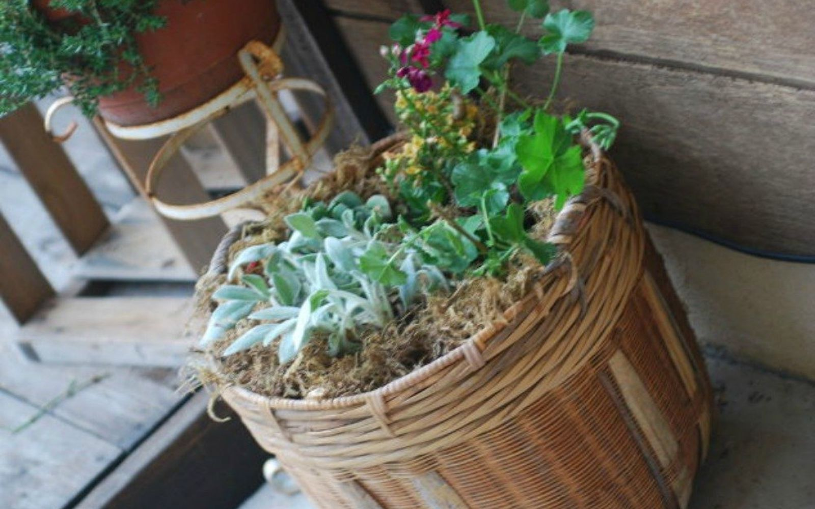 s make wicker trendy again with these brilliant ideas, painted furniture, After An adorable porch planter