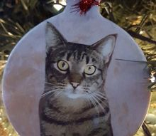 pet photo christmas ornaments, christmas decorations, seasonal holiday decor