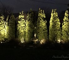 diy uplighting year round low cost magic in your yard, go green, plumbing
