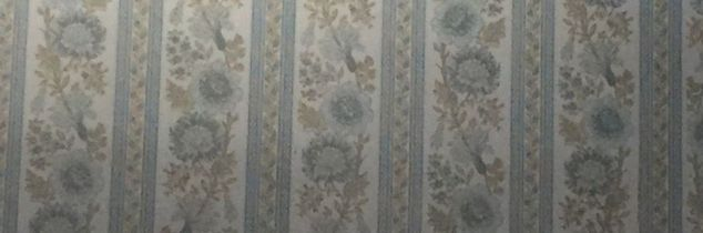 q covering up old wallpaper, wall decor