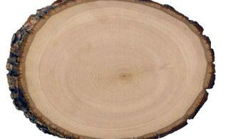 q photo wood transfer