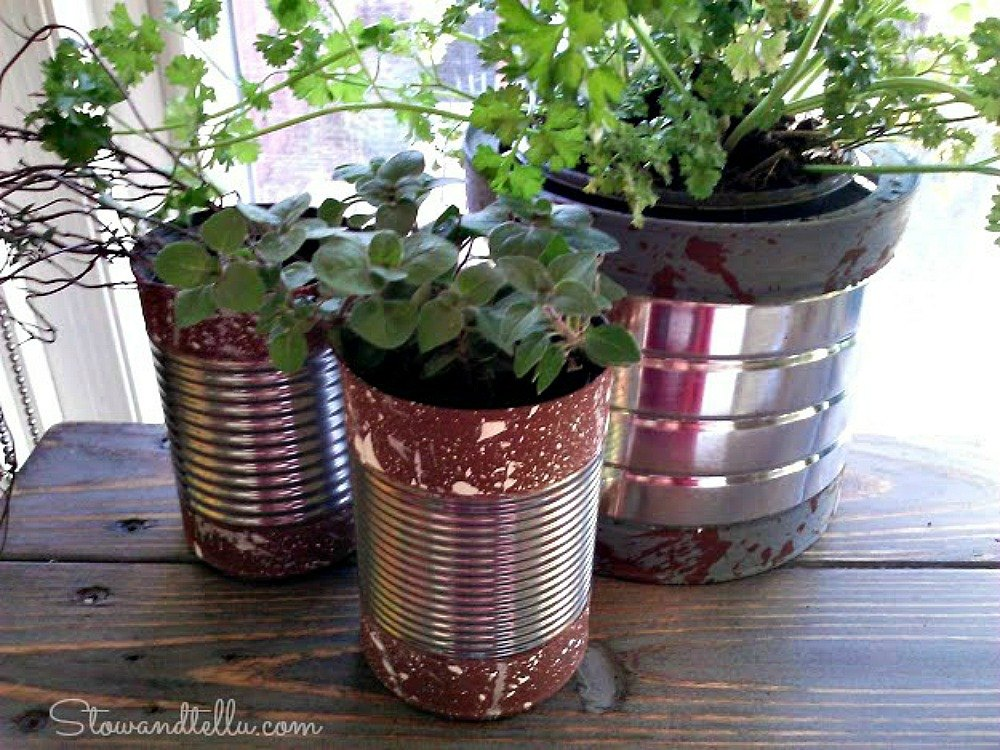 14 Winter Planter Ideas For When You Re Missing Your