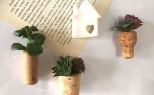 succulent wine cork magnets, flowers, gardening, succulents