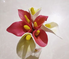 calla lily cold porcelain clay, flowers, gardening
