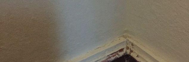 q paint on trim