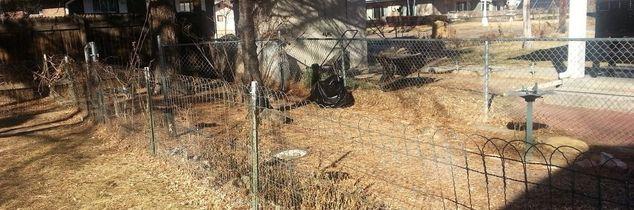 q chicken wire fence, fences