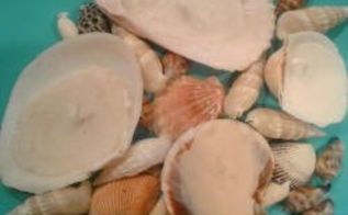 turn your seashells into beautiful little candles