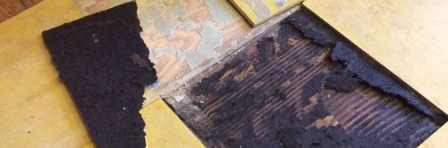 q is this asbestos mold rot anyone have an idea, cleaning tips