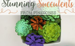 stunning succulents from pinecones, flowers, gardening, succulents