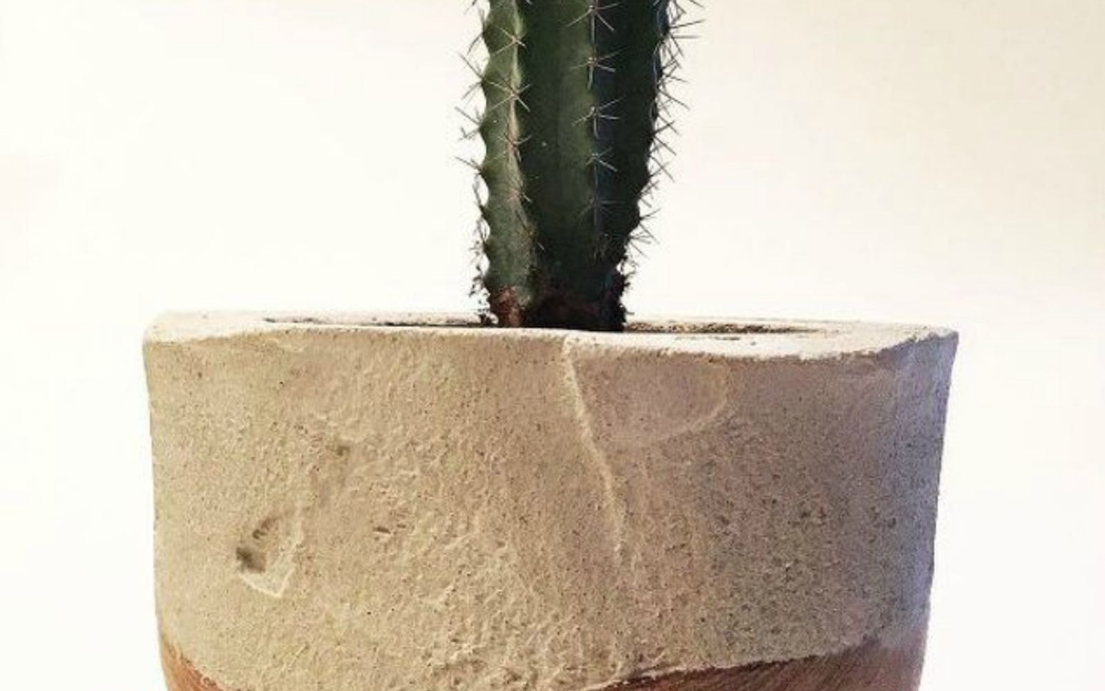 s 14 stunning ways to add cement to your home decor, concrete masonry, home decor, Add it to a wood bowl to use as planters