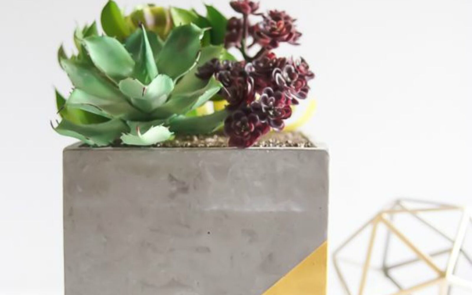 s 14 stunning ways to add cement to your home decor, concrete masonry, home decor, Form it into a succulent planter