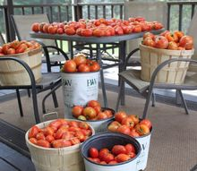 8 proven tips to grow your best tomato crop ever, gardening, Tips to grow your biggest crop ever
