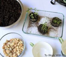 kitchen herb garden a challenge project, kitchen design
