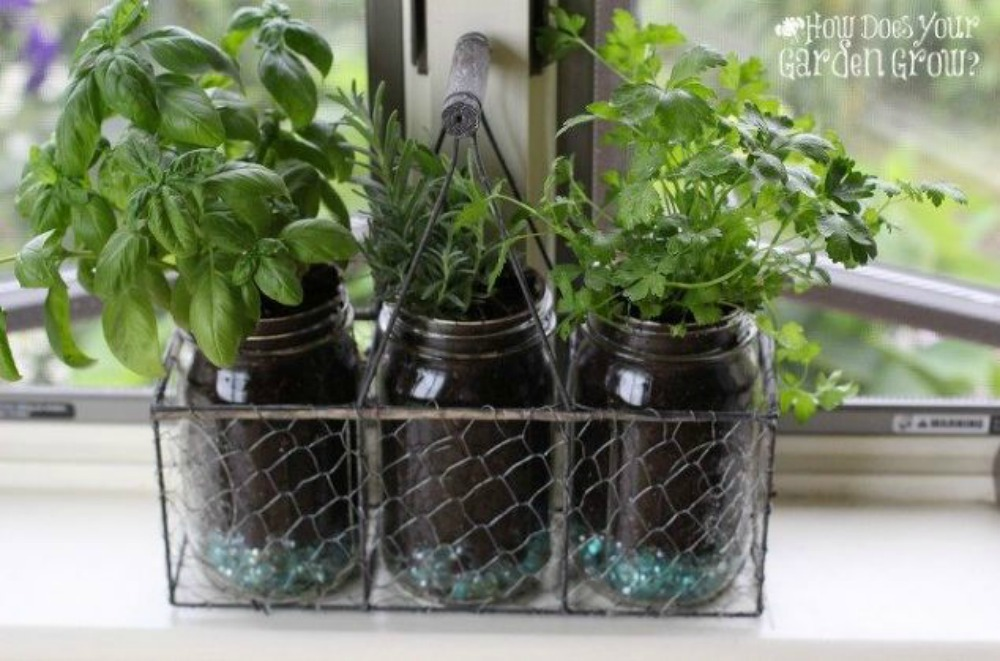 Countertop Herb Garden : Get Rid of Kitchen Countertop Clutter With 13 Clever Mason Jar Ideas ...