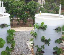 ingenious tips to diy this vegetable planter, gardening