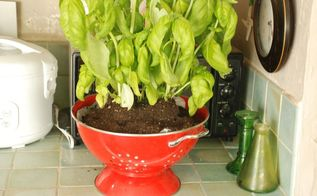 retro strainer planter, gardening, home decor