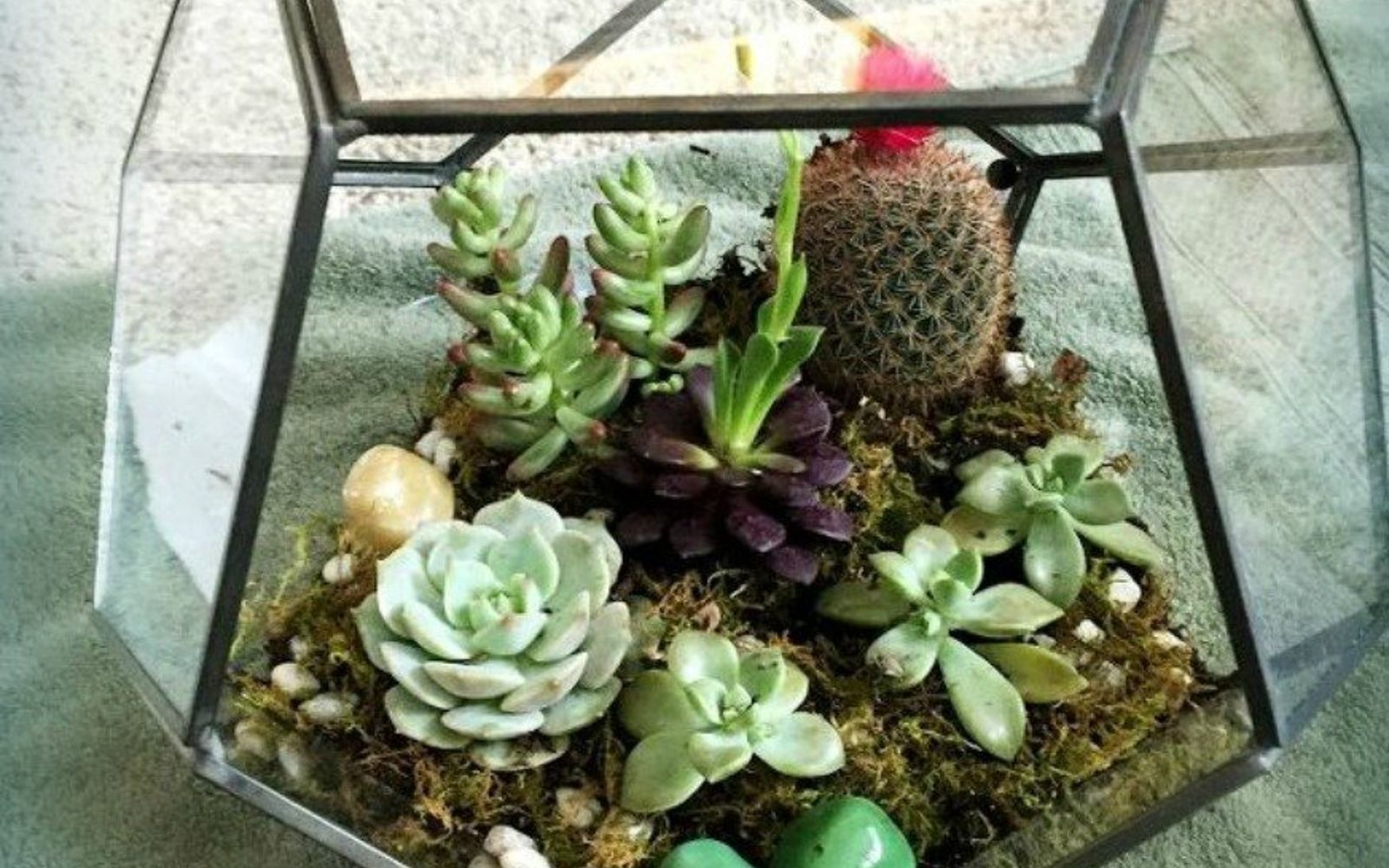 s 21 of the cutest terrariums we ve ever seen, gardening, terrarium, These hanging globe terrariums