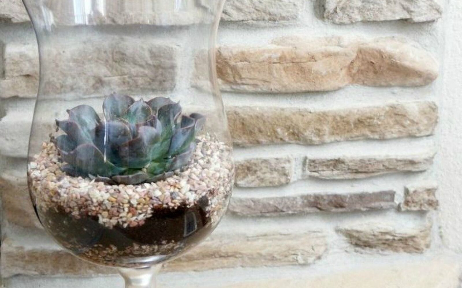 s 21 of the cutest terrariums we ve ever seen, gardening, terrarium, This simple vase one