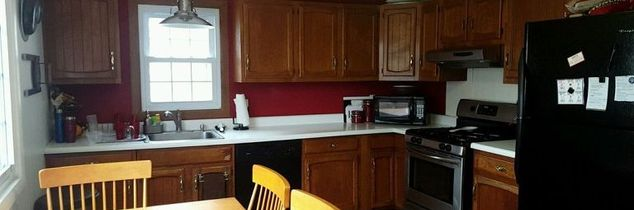 q painting kitchen cabinets torn on which color, kitchen cabinets, kitchen design