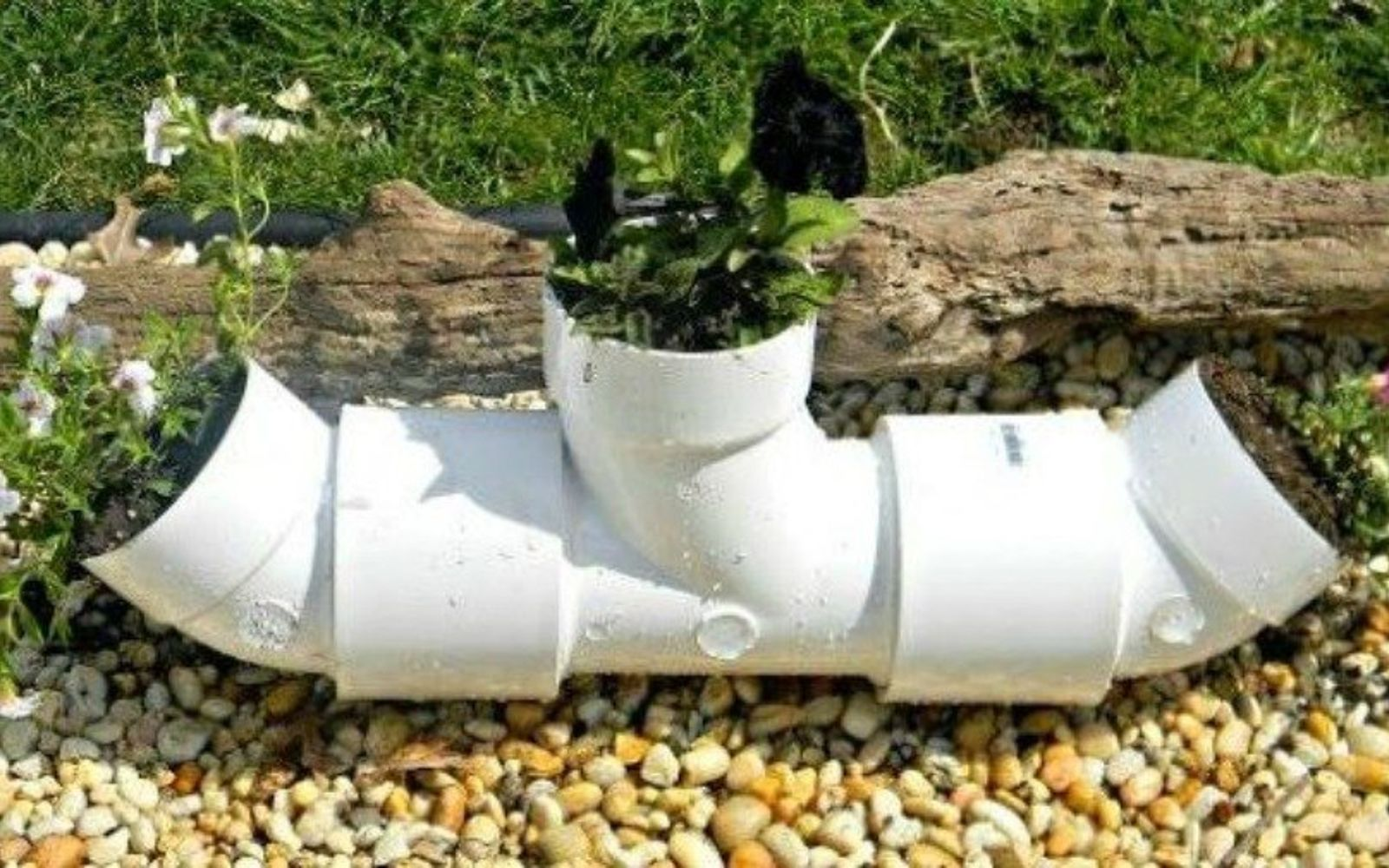 s the 15 coolest ways to reuse pipes in your home decor, Plant flowers in a PVC pipe