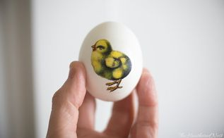 easy easter eggs with downloadable vintage spring images, animals, appliance repair, appliances, architecture, basement ideas, bathroom ideas, bedroom ideas, bug extermination, bug repellent, chalk paint, chalkboard paint, christmas decorations, cleaning tips, closet, composting, concrete masonry, concrete countertops, concrete creations, concrete repair, container gardening, cosmetic changes, countertops, craft rooms, crafts, curb appeal, decks, decoupage, dining room ideas, diy, doors, earthworms, easter decorations, electrical, entertainment rec rooms, exterior home painting, fabric cleaning, fences, fireplace cleaning, fireplace makeovers, fireplaces mantels, fixing windows, flooring, flowers, foyer, furniture cleaning, furniture id, furniture refurbishing, furniture repair, garage doors, garages, gardening, gardening pests, gardening tools, go green, halloween decorations, hardwood floors, hibiscus, home decor, home decor cleaning, home decor dilemma, home decor id, home improvement, home maintenance repairs, home office, home security, homesteading, house cleaning, how to, hvac, hydrangea, indoor pests, interior home painting, kitchen backsplash, kitchen cabinets, kitchen design, kitchen island, landscape, large home improvement projects, laundry rooms, lawn care, lighting, living room ideas, major home repair, mantels, mason jars, minor home repair, organizing, outdoor furniture, outdoor living, outdoors cleaning, paint colors, painted furniture, painted furniture finishes, painting, painting cabinets, painting concrete, painting over finishes, painting upholstered furniture, painting wood furniture, pallet, patio, patriotic decor ideas, perennial, pest control, pet stain cleaning, pets, pets animals, plant care, plant id, plumbing, ponds water features, pool designs, porches, products, raised garden beds, real estate, removing paint from furniture, repurpose building materials, repurpose furniture, repurpose household items, repurpose unique pieces, repurpos