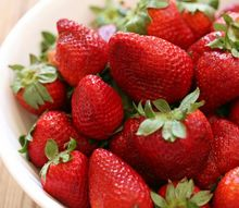 planting strawberries and caring for your plants