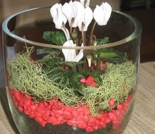 terrarium from old glass jars and vases