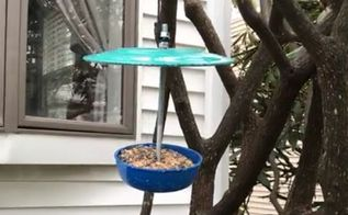 fun bird feeder from dishware