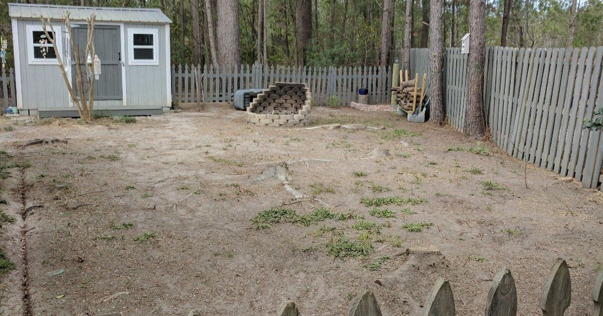 Bare Dirt Yard Ideas Needed!   Hometalk