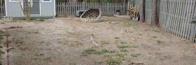 q bare dirt yard ideas needed