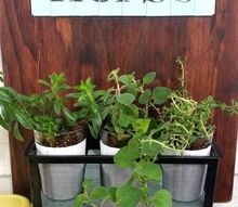 upcyled herb garden