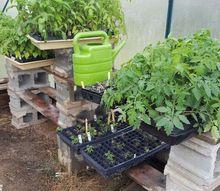 super easy diy greenhouse shelves